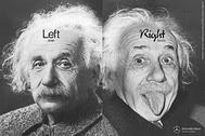 Left Brain-Right Brain Einstein